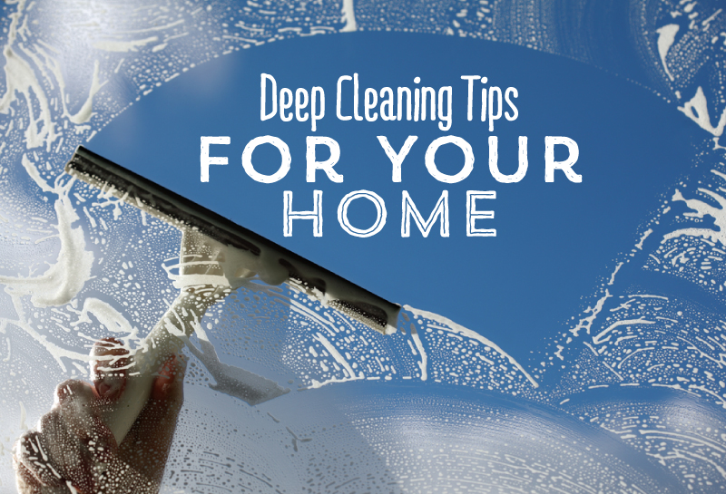 Deep Cleaning Tips For Your Home Cure All Pest Control