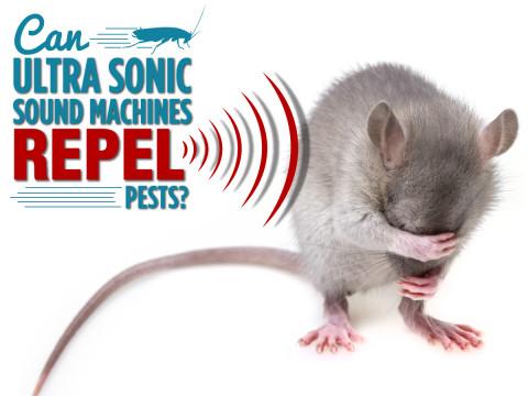 Ultra-sound-pest-control-fb-1200x900