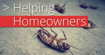 Helping Brisbane Home Owners with Pest Control
