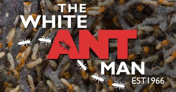 White Ant Man Termite Control Brisbane