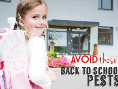 How to Avoid the Back-to-School Pests