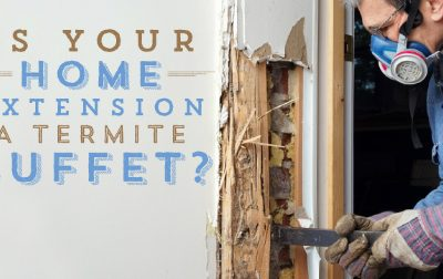 Is Your Home Extension a Termite Buffet?