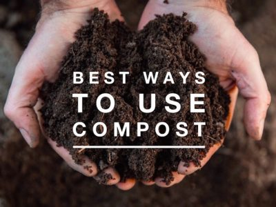 Best Ways to Use Compost