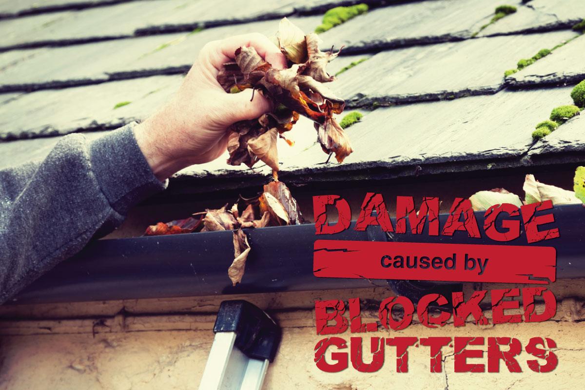 Blocked-gutters-header