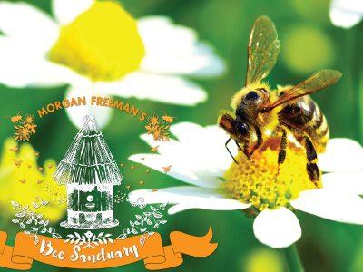Morgan Freeman Creates a Bee Sanctuary
