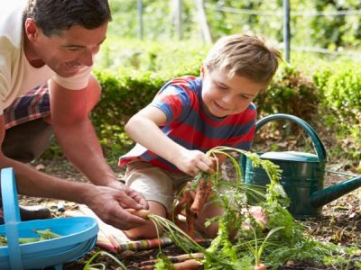 What to Teach Your Kids About Safe Gardening