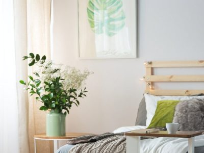 Checking for pests: The Bedroom