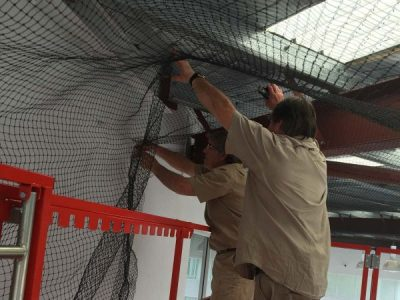 Warehouse Bird Proofing: Netting, Spikes, Removal & Shock Systems